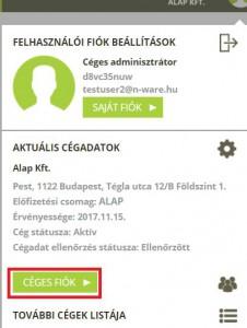 billzone_blog_online-szamlazo_szamlazasi-adatok_001